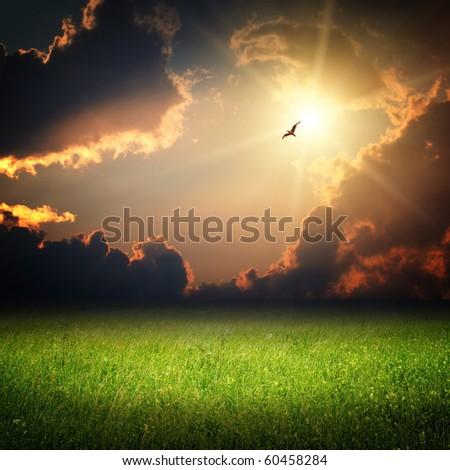 Fantasy landscape. Magic sunset and bird on sky in sun light - stock photo