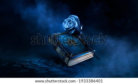Fantasy magic dark background with a magic rose, flower, old book, old iron mirror. Smoke, smog, night view of a dark street. Reflection of blue neon light. Magic, fortune telling.