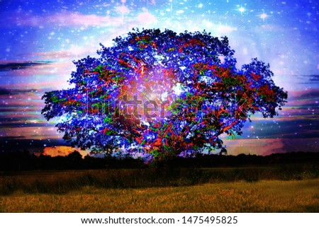 Fantasy sacred grove, sacred oak of the Celts, druids tree, worship of trees. Elements of this image furnished by NASA.