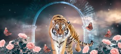 Fantasy tiger walking from magical mirage of ancient gate old stone ruins on fabulous magical night sky background with shining stars, rose flower garden and peacock eye butterflies, panoramic banner