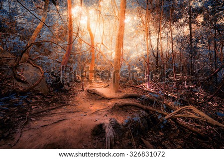 Fantasy tropical jungle forest in surreal colors. Concept landscape for mysterious background