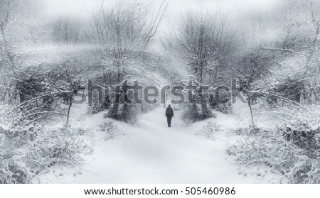 fantasy winter scene #505460986