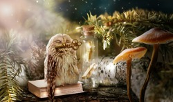 Fantasy wise sleeping owl is the keeper of secrets holds golden key to knowledge in beak in magical mysterious forest with magic mushrooms and books locked in glass bottle