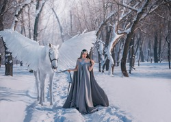 Fantasy woman elf goddess walk with mythical white horse Pegasus with white wings in winter forest. Long medieval in dress, grey cape. silver diadem tiara. Fairy tale Snow queen. Girl elf princess