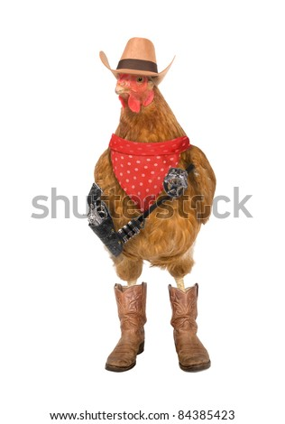 Far West chicken