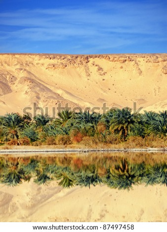 Farafra oasis in the Sahara, lake in the desert, Egypt