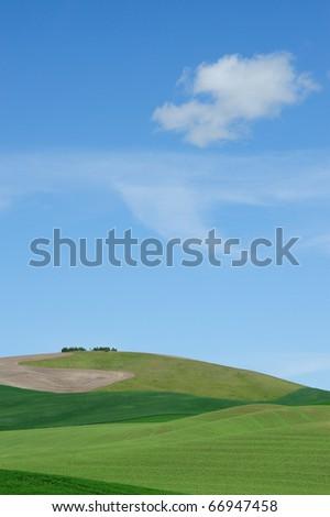 Farm and wheat fields in palouse area, washington, usa