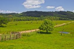 Farm at Torres - Rio Grande do Sul - Brazil