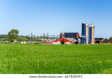 Farm Buildings with Silos in the America Countryside on a Clear Autumn Day #667830991