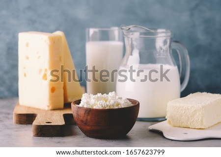 Farm dairy products on gray background Foto stock ©