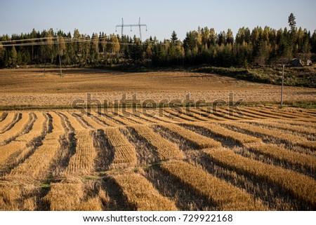 Farm field #729922168