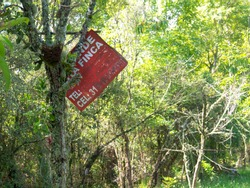 Farm for sale worn metal sign hanging from a tree in a forest. The sign reads in Spanish:  FARM, two incomplete words and TEL for telephone and CEL for cellphone and the number 31.
