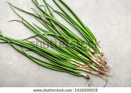 Farm fresh onion, green produce freshly harvested organic vegetables, top view #1426000058
