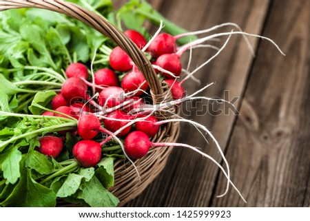 Farm fresh vegetables. Freshly harvested organic radishes, red bunch of radish on farmer market. #1425999923