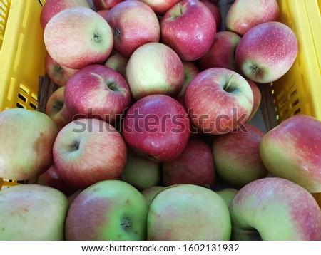Farm freshly plucked fruit apples