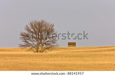Farm Granary Prairie Canada