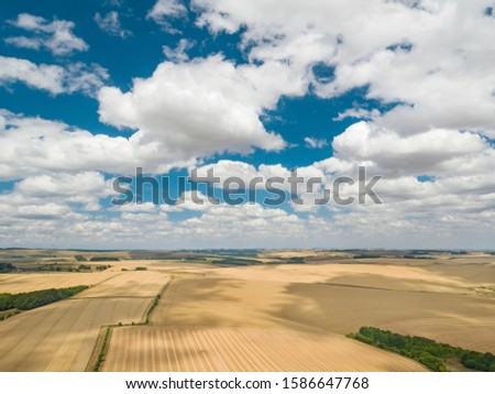 Farm harvest wheat fields aerial landscape and summer blue sky with fluffy white clouds