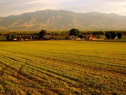 Farm hay field river bottom Mount Graham