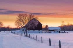 Farm house and barn on early morning winter landscape