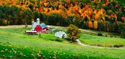 Farm in valley of hills during Fall with autumn colors showing in the evening with contrast and depth of field from a high angle above on the hill that has fallen turned leaves on grass in foreground
