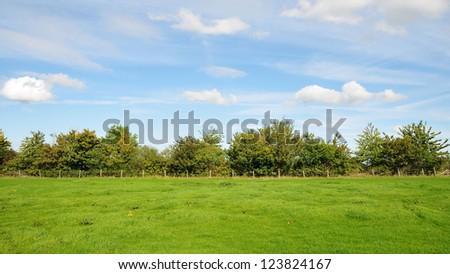 Farm Landscape of a Green Field and Blue Cloudy Sky Above