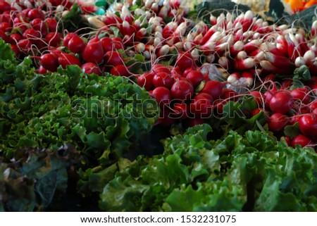 Farm market photo with different vegetables and greens. Organic products and healthy lifestyle. Fresh natural background.