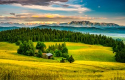 Farm on the edge of the forest. Forest land farm. Farm in forestland. Farm on forest edge