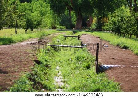 Farm Waterway Day Summer