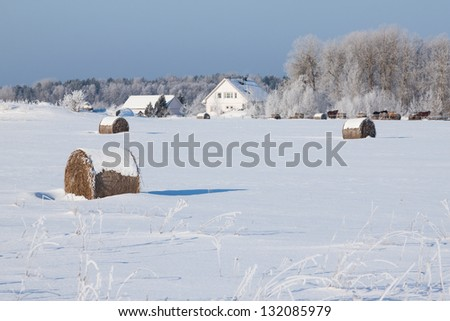 Farm with a barn, horses and bales of hay laying in the snow on farm winter field