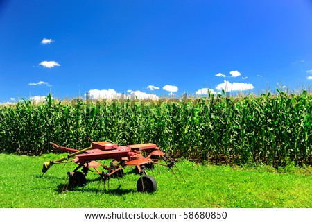 Farm with Fresh Corn and red farm equipment