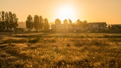 farm with sunrise backgrounds