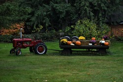 Farmall Tractor and Wagon Filled with Flowers and Pumpkins