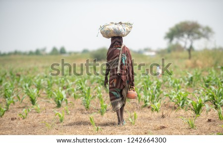 Farmer African girl walking in farm field in Chad N'Djamena travel, located in Sahel desert and Sahara. Hot weather in desert climate on the Chari river in Africa.