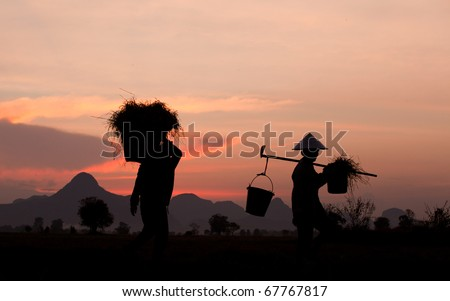 farmer and sunset