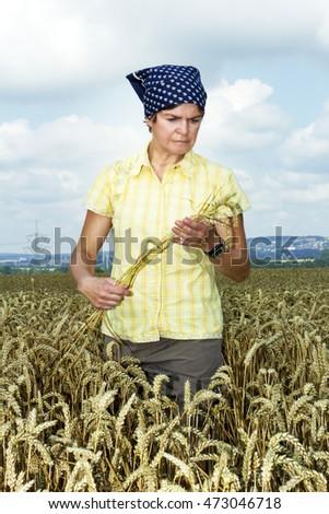 Farmer controlled her wheat field #473046718