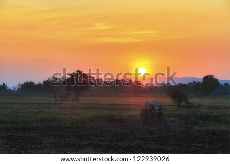 Farmer drives tractor in the farm at sunset