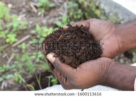 Farmer holding pile of vermicompost. Male agronomist showing compost manure. Can be use as fertilizer to accelerate growth of plant in organic farming. Organic farming concept. agriculture background