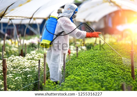 Farmer in Chemical protection suit sprayed fertilizer on the flower farms. Foto stock ©