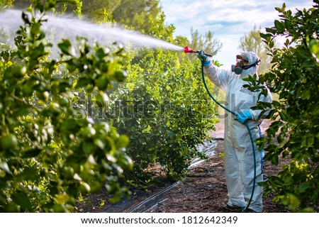 Farmer in protective clothes spray pesticides. Farm worker spray pesticide insecticide on fruit lemon trees. Ecological insecticides Foto stock ©