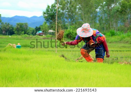 Farmer is a profession, the majority of people in the profession.