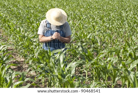 farmer kneeling in his corn field praying for a good crop