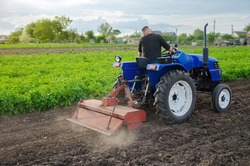 Farmer loosens and cultivates soil of field. Milling soil, crushing before cutting rows. Farming, agriculture. Loosening surface, land cultivation. Plowing. Agroindustry and agribusiness