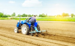 Farmer on a tractor making ridges and mounds rows on a farm field. Marking the area under planting. Soil preparation. Farming agribusiness. Agricultural industry. Growing vegetables food plants.