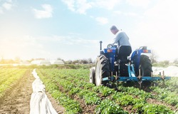 Farmer on a tractor with milling machine loosens, grinds and mixes soil. Farming and agriculture. Cultivation technology equipment. Crop care. Farming agricultural industry. Small business support.