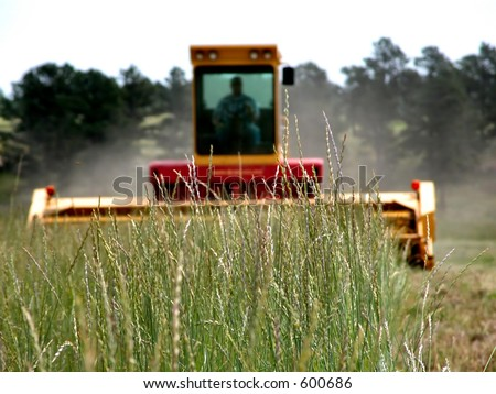 Farmer operating heavy machinery during harvest (focus point on foreground grass/crop).