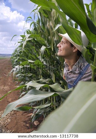 farmer peeking from a corn field