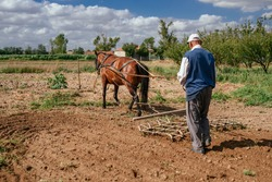 farmer plowing his field with horse
