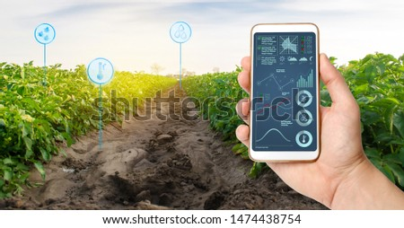 Farmer's holds a smartphone on a background of a field with a potato plantations. Agricultural startup. Automation and crop quality improvement. High technology, innovation. Scientific research. #1474438754