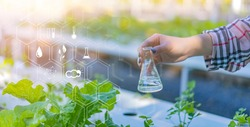 Farmer scientist using flask with liquid chemical taking care of agriculture hydroponic vegetable and plant using modern, temperature and water moisture treating growth control information icon