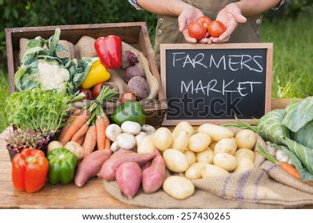 Farmer selling organic veg at market on a sunny day